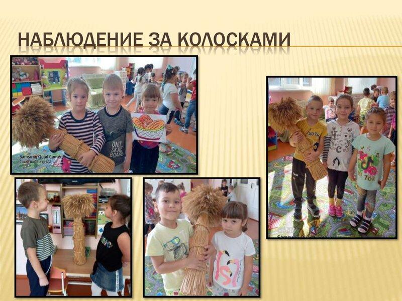 xleb-vsemy-golova_00011